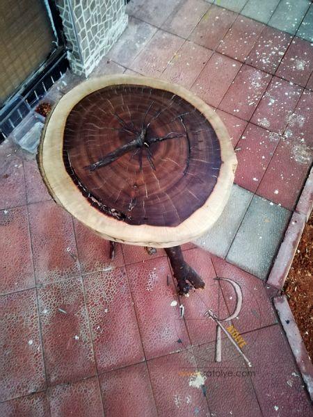 Doğal Ağaç Dalı Ayaklı Dekoratif Masa - BF01-02