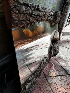 Doğal Meşe Ağacı Kenarlı Ayna - QA01-06 - Thumbnail