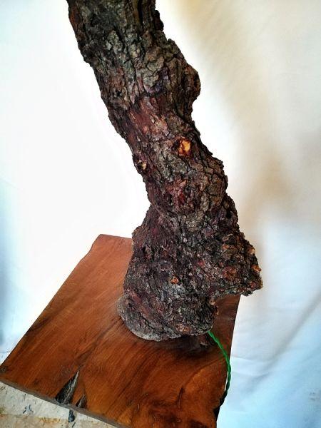 Doğal Meşe Kütük Köşe Lambader - BL03-03