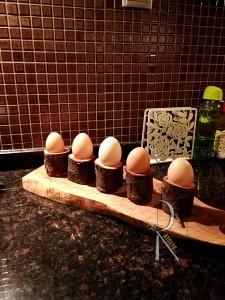 Kütük Yumurtalık - CA09-03 - Thumbnail