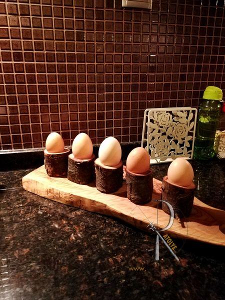Kütük Yumurtalık - CA09-03